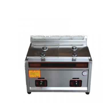 Electric Small Commercial Double Deep Fat Oil Fryer