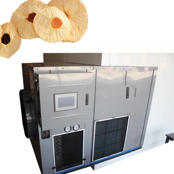 Large Industrial Continuous Microwave Belt Type Fruit and Vegetable Dryer