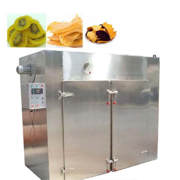 Factory Spply Stainless Steel Industrial Fruit Tray Dryer
