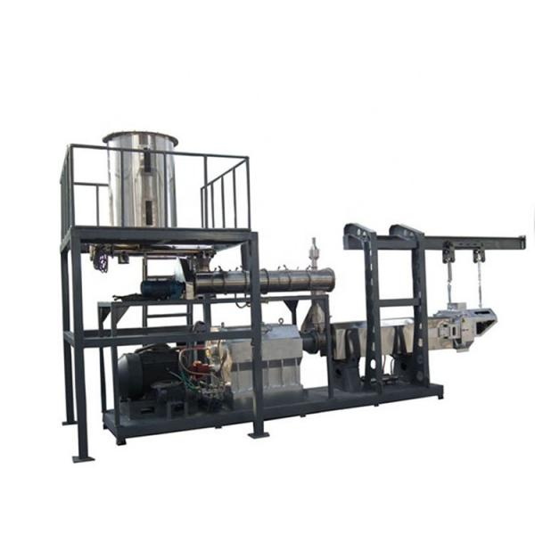 Automatic Twin Screw Extruder Sugar Coated Crunchy Corn Flakes Cereal Maker Machine