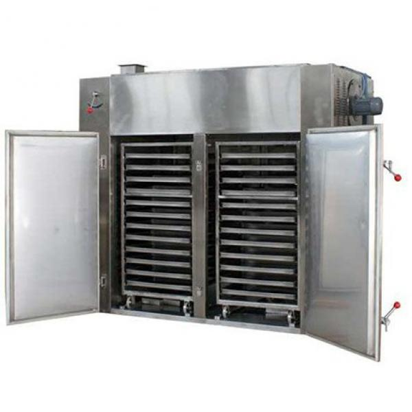 Industrial Medium Temperature Double Door Vegetable Fruit Food Dryer Machine